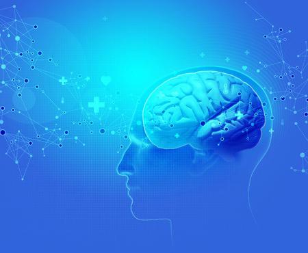 Darstellung eines Gehirns