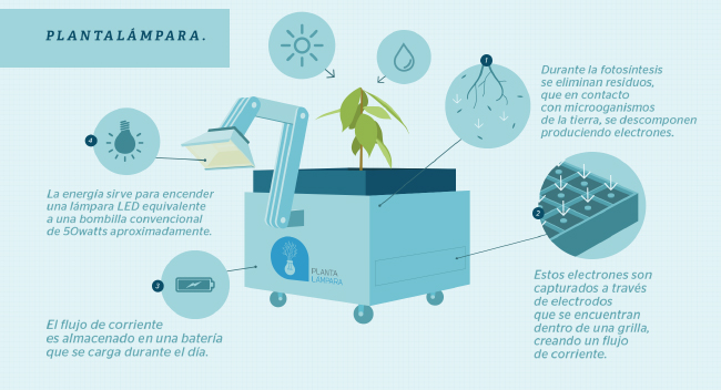 Infografik zur Funktionsweise der Pflanzenlampe